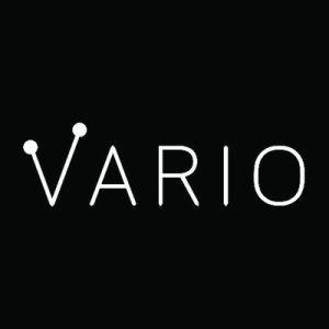 Vario Logo 2