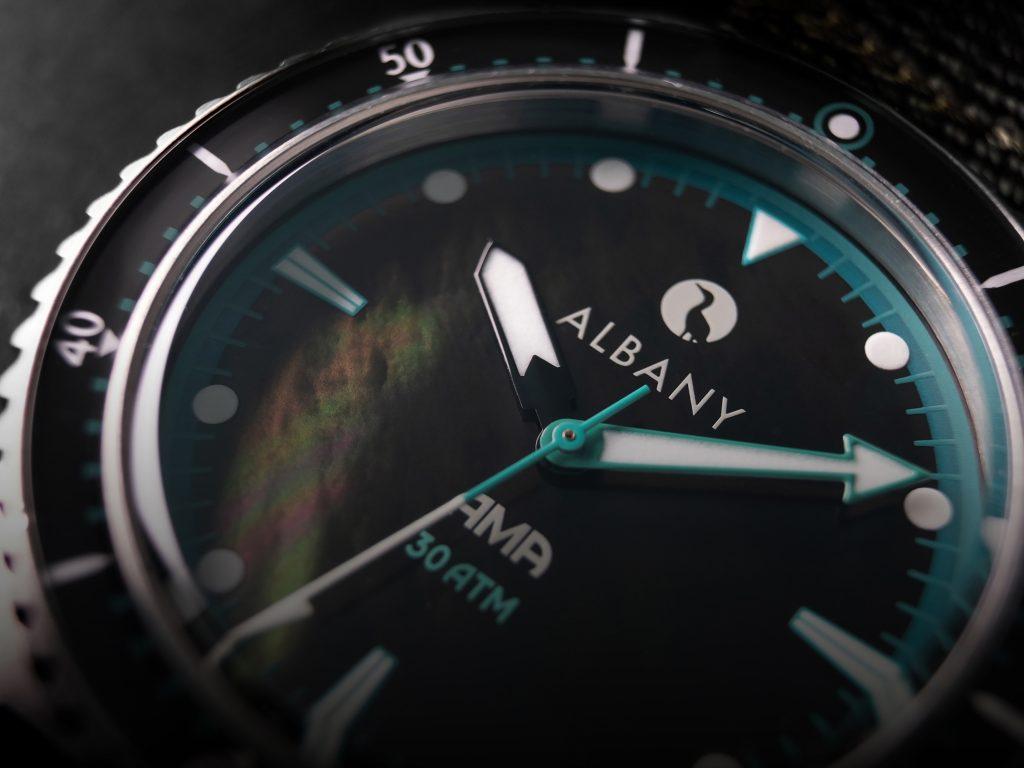Albany AMA Diver 4